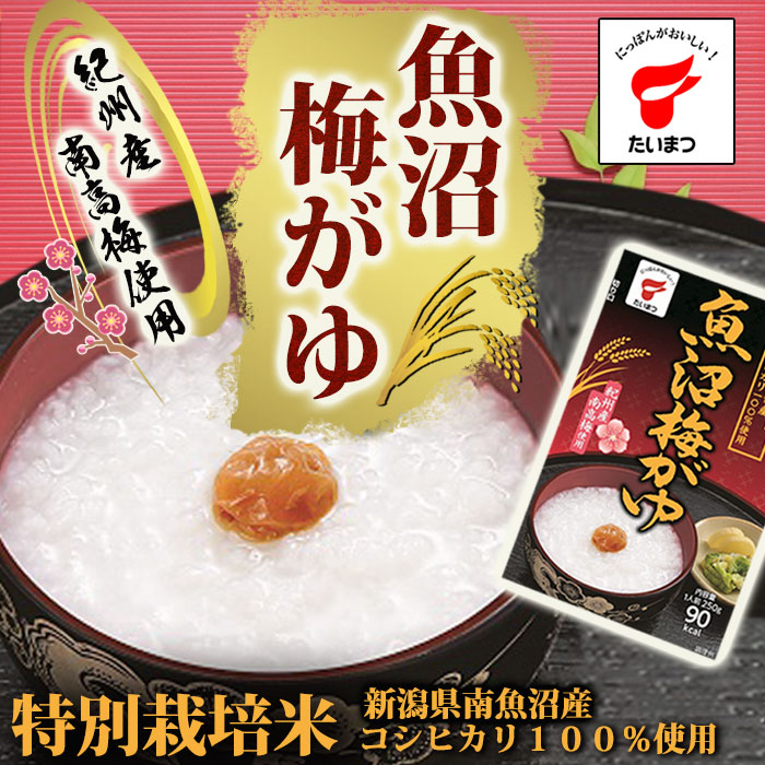 Photo1: 魚沼梅がゆ250g(たいまつ食品) (1)
