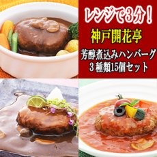 Photo1: レトルト ハンバーグ 神戸開花亭 芳醇煮込みハンバーグ 3種類15個セット (1)