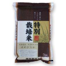 Photo2: 北海道 ゆめぴりか 無洗米 5kg (2)