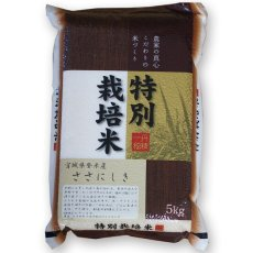 Photo2: 宮城県 登米産 ささにしき 無洗米 5kg (2)