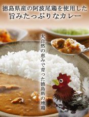 Photo5: 徳島特産レトルトカレー2種10食セット ご当地カレー お試しセット アソートセット レトルト食品 お土産 非常食 保存食 ギフト (5)