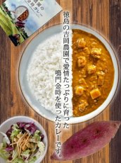 Photo3: 徳島特産レトルトカレー2種10食セット ご当地カレー お試しセット アソートセット レトルト食品 お土産 非常食 保存食 ギフト (3)