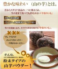 Photo2: とろろ フリーズドライ 粉末山の芋パウダー10g 100%山芋パウダー とろろご飯やお好み焼きに!保存食 海外土産 (2)