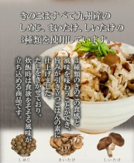 Photo2: 炊き込みご飯の素 九州産 きのこごはんの素150g 化学調味料 添加物不使用 国産 ギフト 贈り物 ベストアメニティ (2)