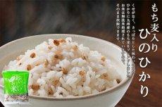 Photo5: 国産 無洗米 おいしいお米 もち麦入りひのひかり 150g 一合分 お試し 一人暮らし ベストアメニティ (5)