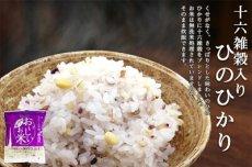 Photo5: 国産 無洗米 おいしいお米 十六雑穀入ひのひかり 150g 一合分 お試し 一人暮らし ベストアメニティ (5)