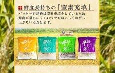 Photo4: 国産 無洗米 おいしいお米 4種類計12合セット お試し 1合分小分け 米・雑穀 もち麦 十六穀米 一人暮らし ベストアメニティ (4)