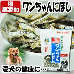 Photo1: 塩無添加 ワンちゃんにぼし お徳用 1kg (愛犬の食べる小魚 煮干し おやつ) (サカモト) (1)