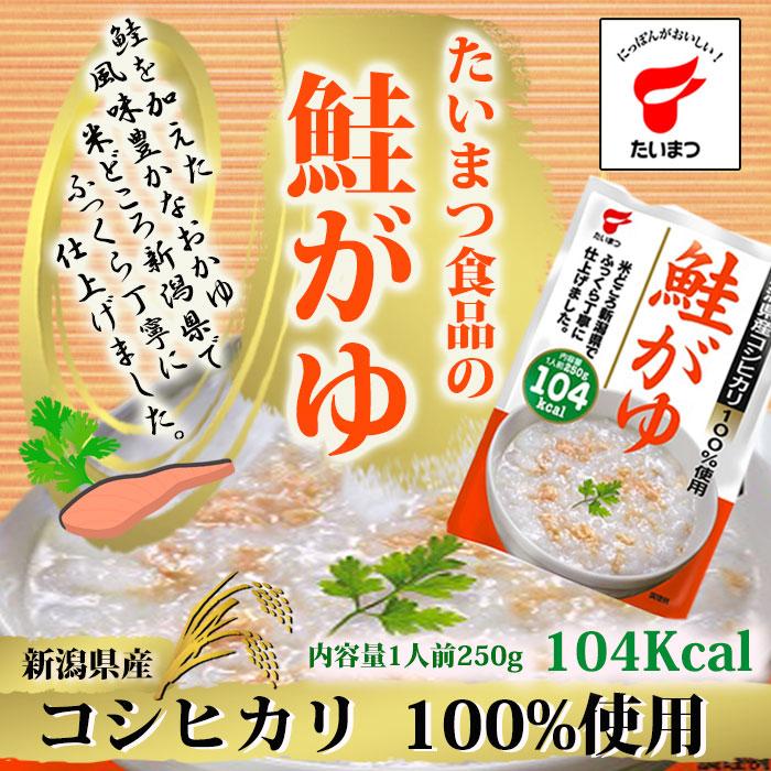 Photo1: 鮭がゆ250g (たいまつ食品) (1)