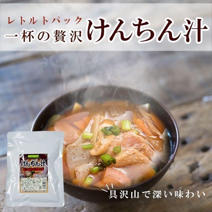 Photo1: レトルト 総菜 けんちん汁250g 醤油味 具だくさん 長期1年保存 (1)