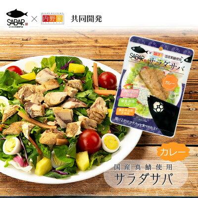 Photo1: サラダサバ  カレー 無添加 uchipac 常温ロングライフ 食品添加物 保存料不使用 (1)