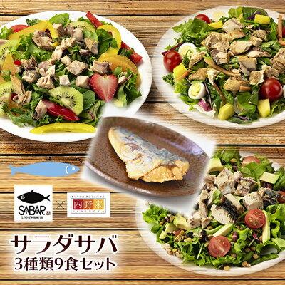 Photo1: サラダサバ 3種類9食セット 無添加 uchipac 常温ロングライフ 安心安全 お惣菜の内野家 国産鶏肉 食品添加物 保存料不使用 (1)
